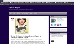 Le site morganmagnin.net après enrichissement via WordPress