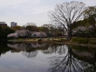 Jour 12, mardi 26 mars 2013 : une pause déjeuner au parc Kitanomaru