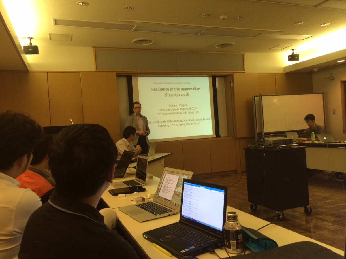 Invited Talk at Systems Resilience Workshop in Karuizawa